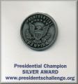 PCA Pin SILVER Award