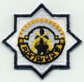 Royal Thai Army Pistol Badge