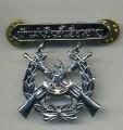 Royal Thai Navy Rifle Expert Badge