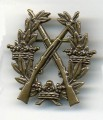 Swedish Army Rifle Bagde BRONZE