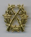 Swedish Army Rifle Badge GOLD