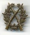Swedish Army Rifle BRONZE Badge medal