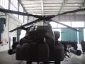 Das Gesicht des Apache