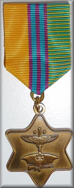 krav-maga-medal-in-gold