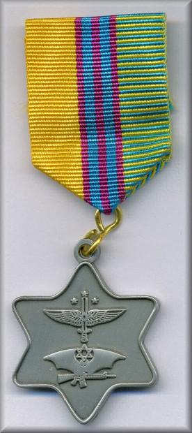 krav-maga-medal-in-silver