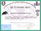U.S. Army Fallschirmsprungabzeichen Basic