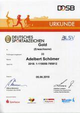 Adi 33 x DOSB Sportabzeichen in GOLD