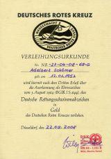 DRK-Wasserwacht Leistungsabzeichen in GOLD