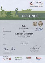 Das Deutsche Sportabzeichen 2013