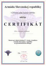 Slavaky Army Basic Wings