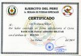 Peruanisches Militär-Fallschirmsprungabzeichen