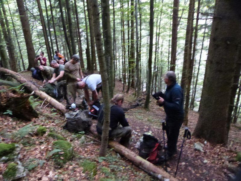 kurze-rast-im-bergwald