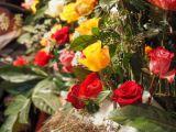 Herrlicher Blumenschmuck im Eingangsbereich